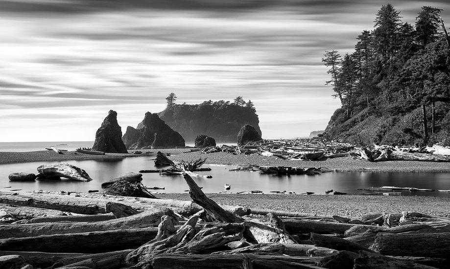 Pacific Coast #3