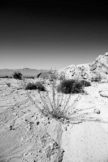 Salton Sea #7