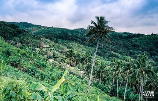 Vanuatu Pentecost Bunlap