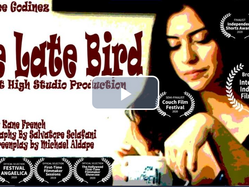 Movie of the Day: The Late Bird (2020) by Kane French