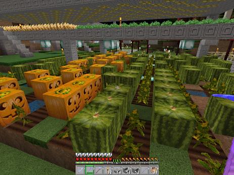 Miners Bank Farm