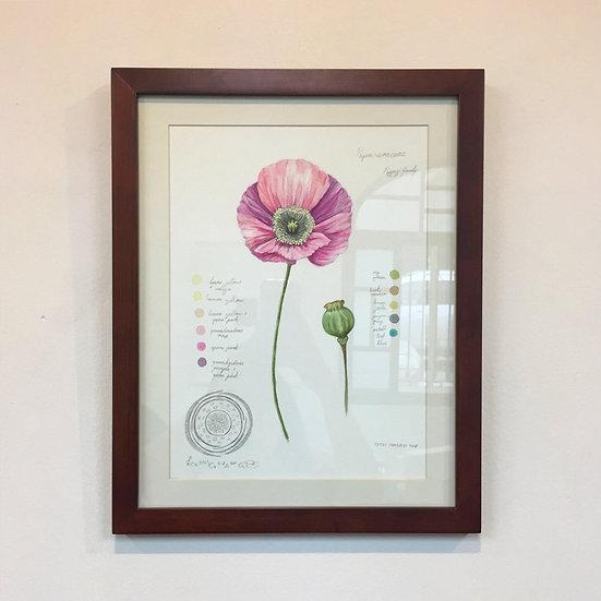 Tetei Cornejo - Poppy Flower, 2018
