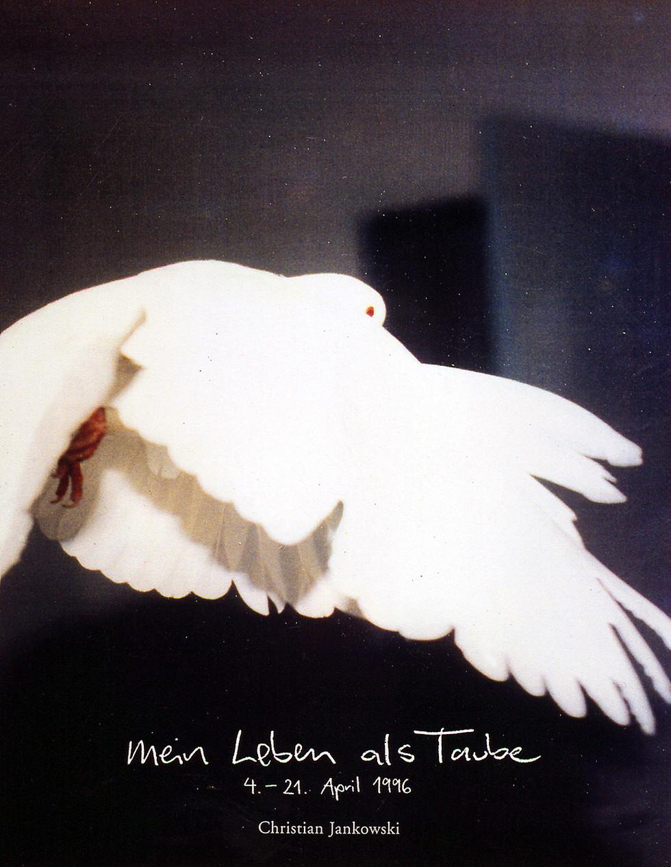 Mein Leben als Taube (My Life as a Dove), 1996 © Christian Jankowski. Courtesy Lisson Gallery
