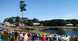 #17 at THE PLAYERS