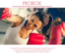 probox.png