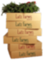 wreath-on-boxes.png