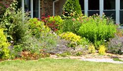Butterfly Garden Brick patio
