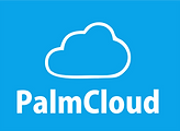 PalmCloud Logo.png