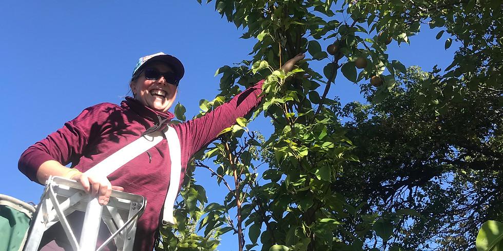 Montezuma County Harvest Team Training and Harvest Extravaganza