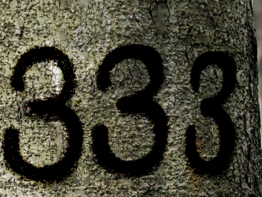 Legend Has It ... The Numbers 333