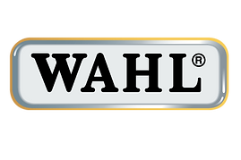 Wahl-Corporate-Logo no statement.png