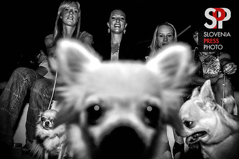 doggy-style-3-spp-ico.jpg