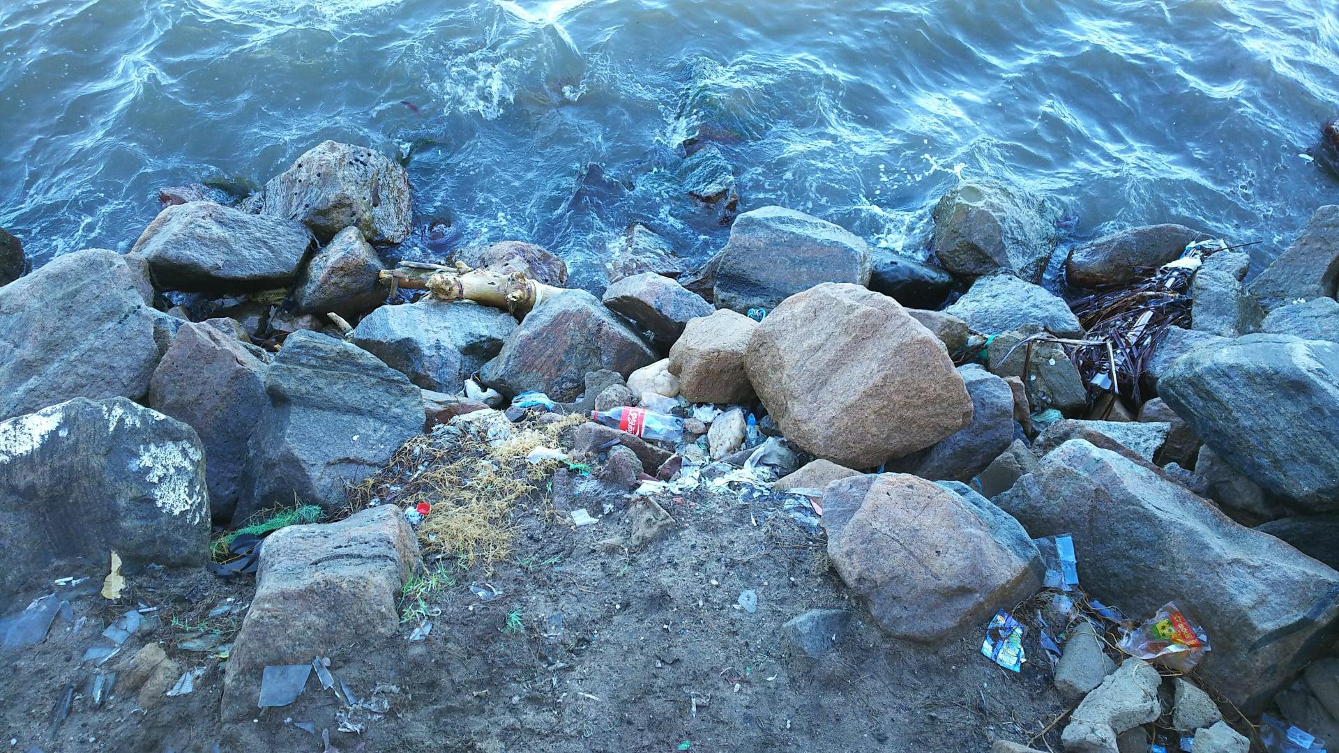 ocean litter.jpg