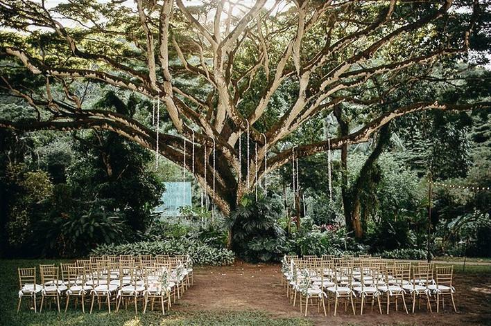 Stunning Waimea Valley Wedding