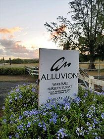 Alluvion Wholesale Nursery Florist Haleiwa Sign