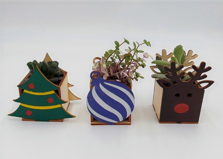Alluvion Christmas Boxes