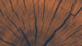 Holzschuhe
