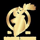 DP final Logo.png