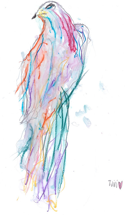 Technicolour Dreambird