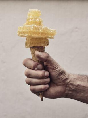 Ciacco gelato