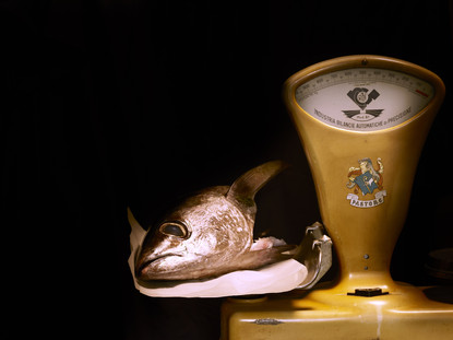 FISH #2 30X40 FINE ART BARYTA 360 GSM