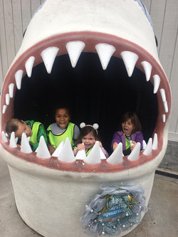 Shark mouth full