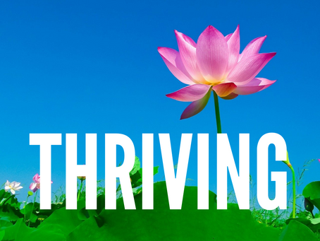 S H I F T I N G into THRIVING