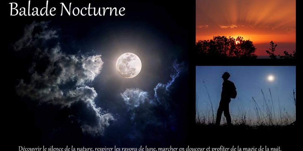 Balade nocturne sous pleine lune