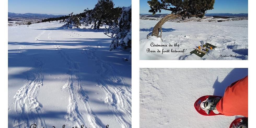 Balade au coeur de l'hiver, une journée en hauteur.