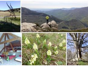 Cinq jours de marche en Ardèche