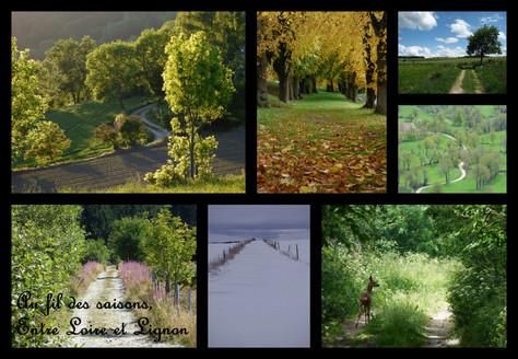 chemins de Haute-Loire
