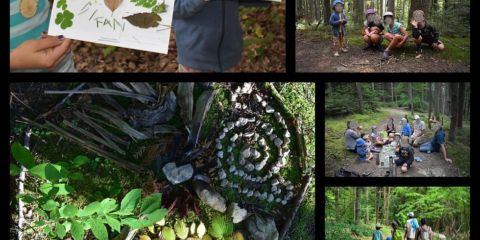 Bain de forêt en Famille le 30 octobre