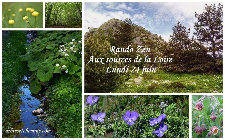 Rando Zen