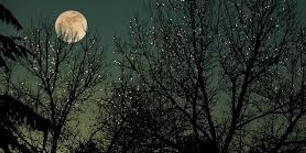 Marchons sous la lune