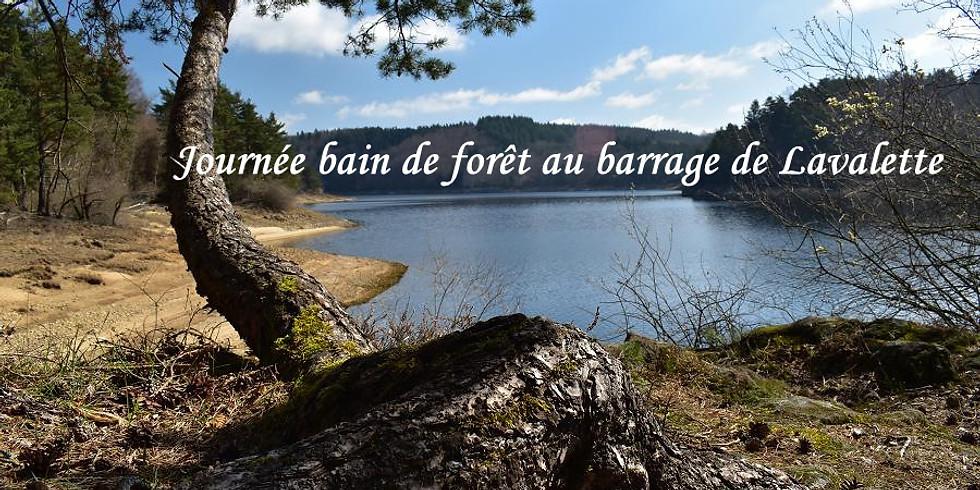 Bain de forêt sur le thème de la communication