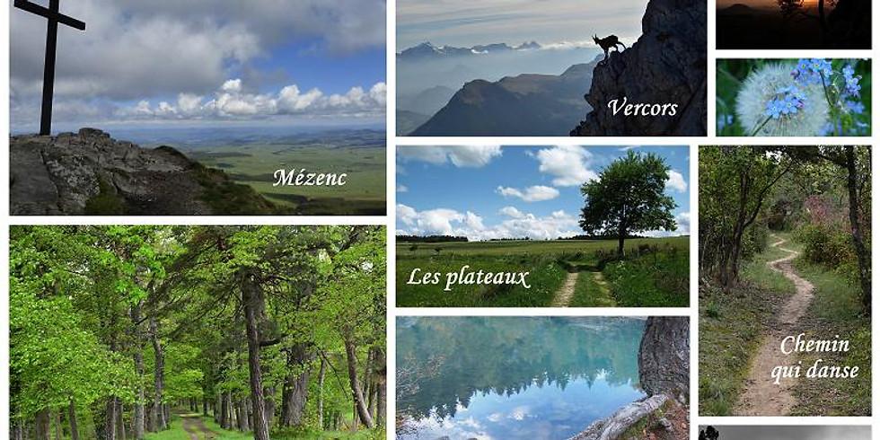 Randonnée zen, sportive, découverte du milieu naturel ......