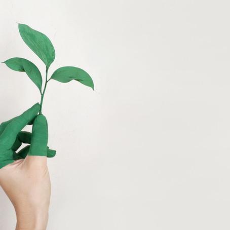 Cómo hacer una boda eco friendly