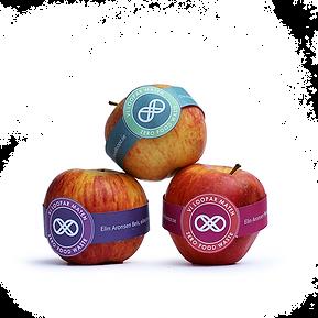 Foodloopz apple low.png