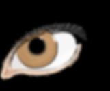 the-eye-of-women-1580620_960_720.png