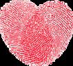 logo transparente 3.png