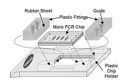 [10] Lab Chip, 5, 8, 845-850, (2005)