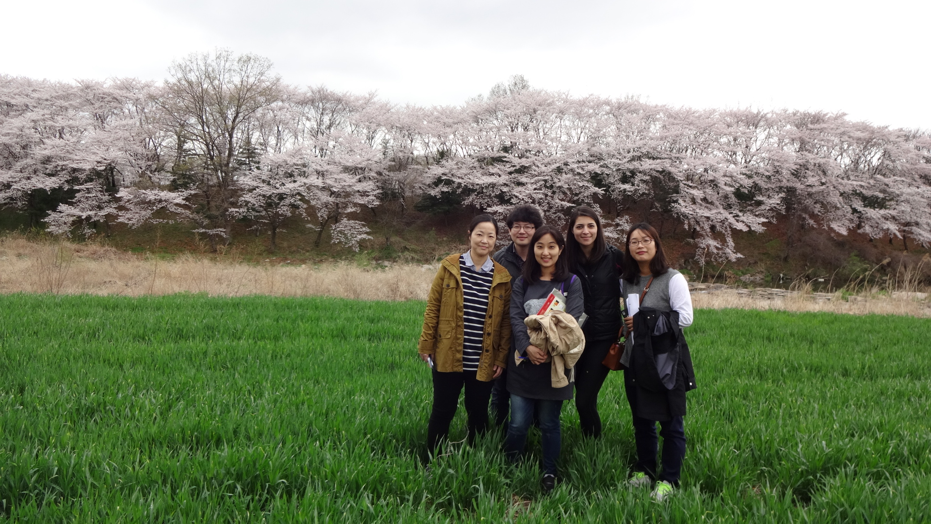 2015 Gyeongju workshop