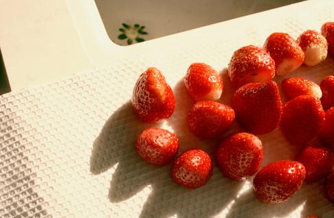 Strawberry, 2019