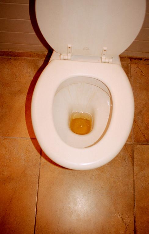 Toilet Bowl, 2019
