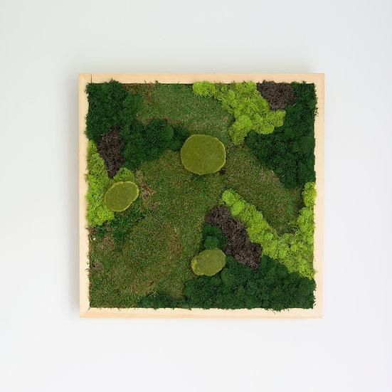 Cadre végétal - Carré