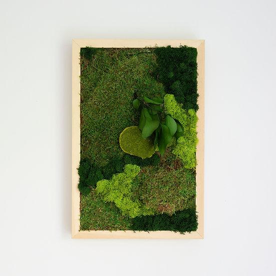 Cadre végétal - Rectangle