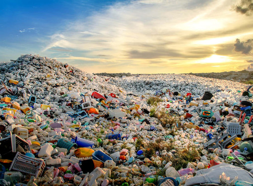 GOVT ENTRUSTS E-COMMERCE PLAYS TO GRADUALLY WEED OUT SINGLE-USE PLASTIC