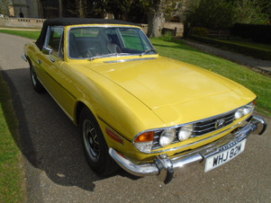 1973 Stag yellow (8).JPG