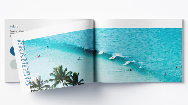 site_SS_book_branding_edited.jpg