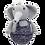 Thumbnail: Olifant Tuimelaar
